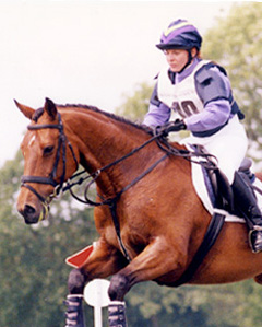 Woman on Horse in showing jumping competition